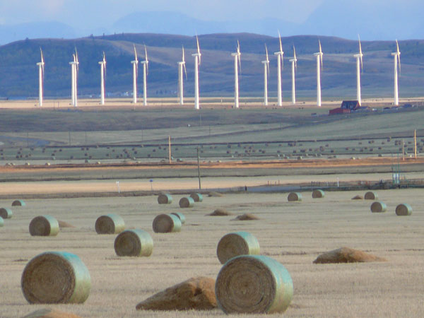alberta wind turbines and round hay bales