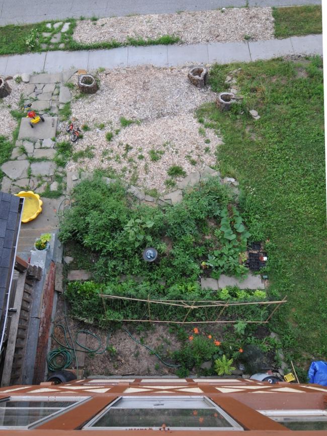 Front garden at Roxbury