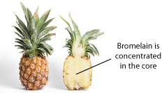 220px-Pineapple_and_cross_s.jpg
