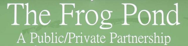 Frog Pond banner