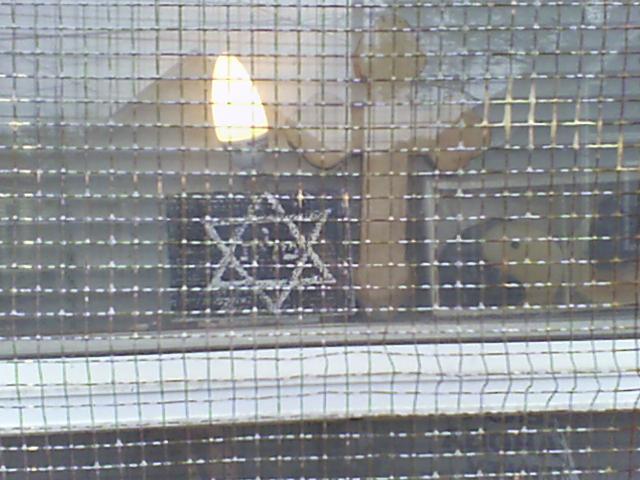 JEWISH_STAR_QUEST_SOPHIA_GUY_MINISTRIES_HOME.jpg