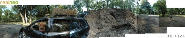 I GRO East Cleveland, Thanks to Free Shaker Heights Mulch
