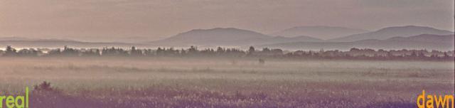 Siberian Dawn Mist