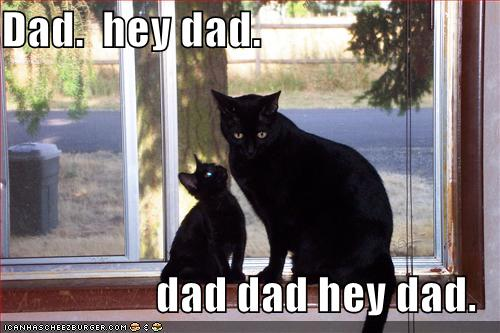 fathers_day_cat.jpg