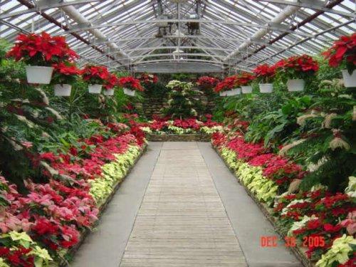 Rockefeller Greenhouse is a Cleveland cultural tresure