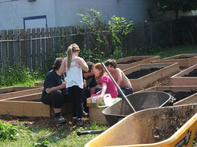 Teaching the children about garden pests.