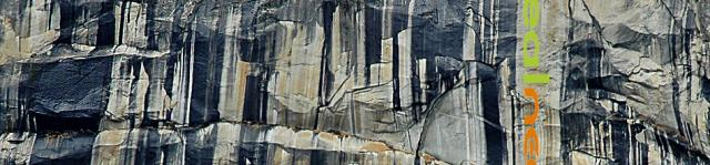 Rigphoto Yosemite rock stains as Realneo banner